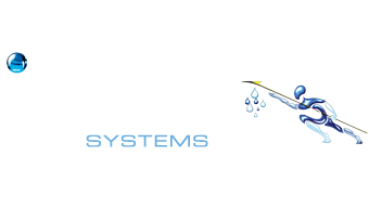 Ionic Systems